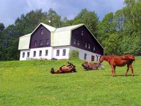 Chata Orličan - Ubytování Orlické hory, chalupy a chaty Orlické hory